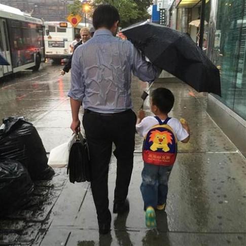 Ảnh bố ướt đẫm che mưa cho con lay động hàng trăm triệu người