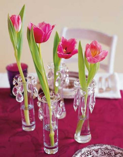 Binh hoa tulip dem mua xuan vao nha