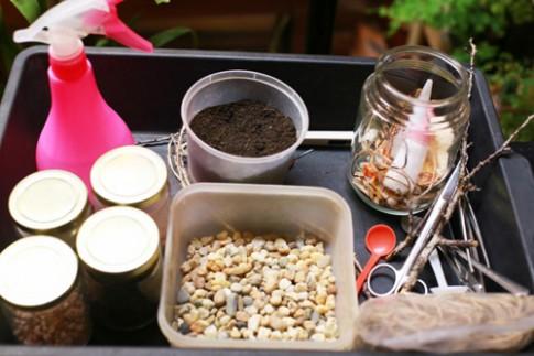Cách tạo một bình cây mini đơn giản
