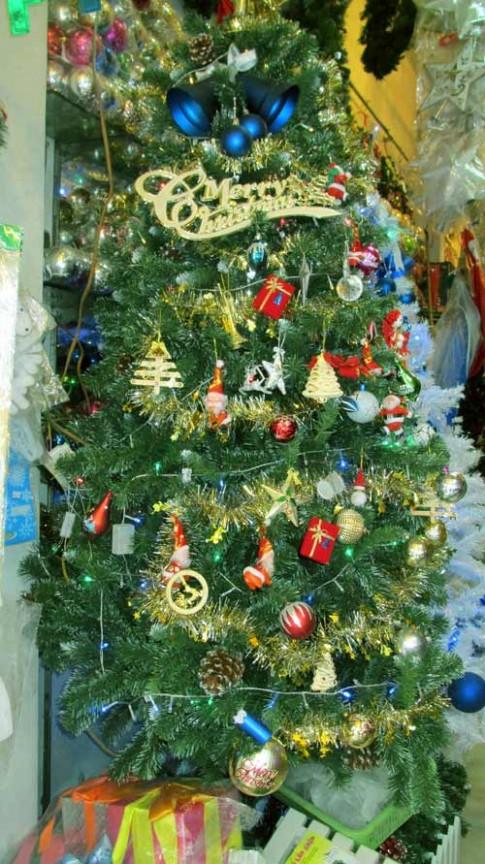 Dạo phố cổ chọn cây Giáng Sinh phù hợp diện tích nhà