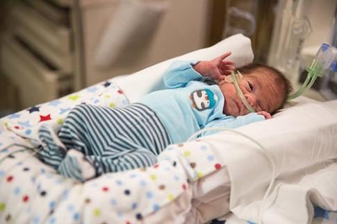 Em bé chào đời từ bụng người mẹ đã chết não gần 2 tháng