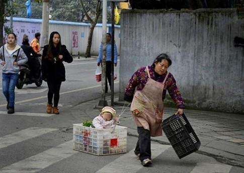 Em bé hàng ngày nằm trong giỏ rau cùng bà đi bán hàng