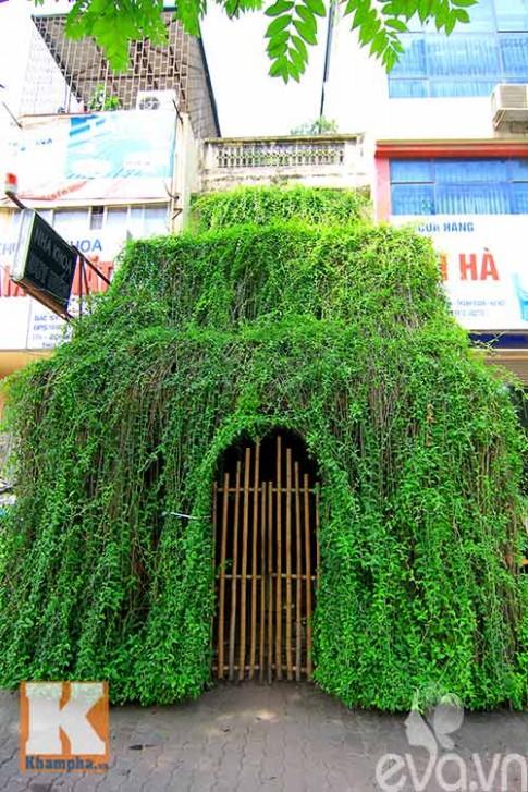 Kỳ dị ngôi nhà trồng dây leo bao phủ mặt tiền