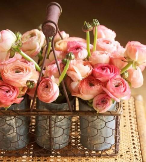 Lo hoa dep du cam trong do dung cu