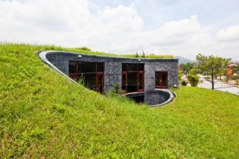 Nhà mái cỏ Việt Nam trong top 20 nhà mái xanh độc đáo