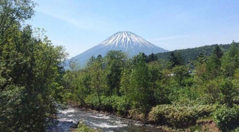 Nhật Bản: Bị cha mẹ phạt bỏ trong rừng, bé trai mất tích