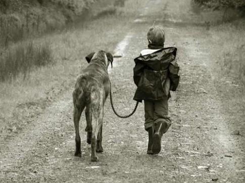 Rớt nước mắt chuyện những đứa trẻ được động vật nuôi