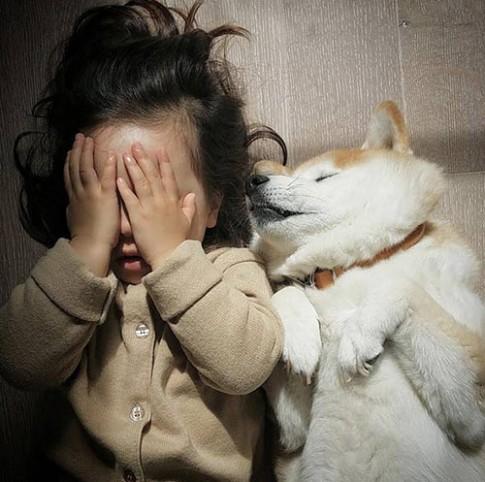 """""""Tan chảy"""" với tình bạn của cô bé Pháp 2 tuổi và chó cưng"""
