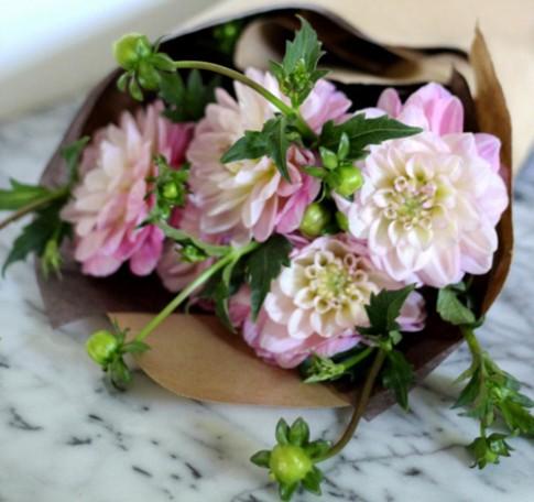 Tặng chị em mẹo cắm hoa tươi lâu