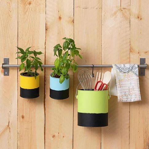 Trang trí nhà bằng những chậu cây không tốn kém