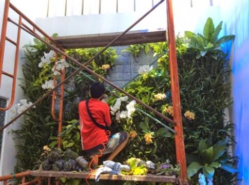 Trào lưu trồng vườn trên tường làm mát nhà phố