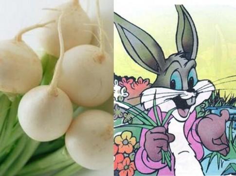 Truyện cổ tích: Chú thỏ và núi củ cải