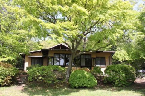 Xanh mát nhà sinh thái cổ 80 năm tuổi