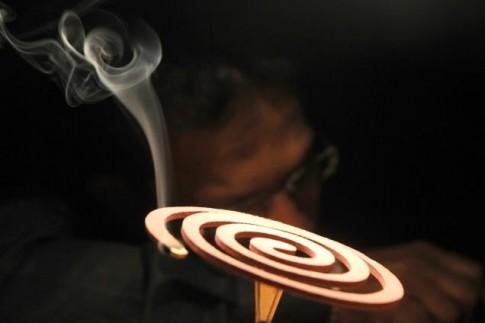 1 vòng nhang muỗi nguy hại tương đương 100 điếu thuốc lá