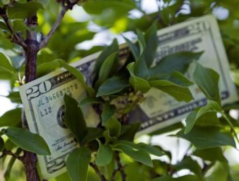 8 bí quyết giúp tiền đổ về như nước