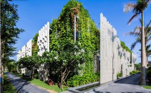 Báo ngoại 'choáng' với nhà phủ cây xanh ở Đà Nẵng