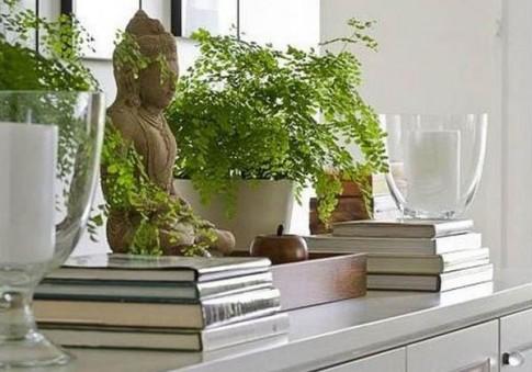 Cách bày tượng Phật trong nhà tránh phạm cấm kị