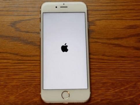 iPhone trở thành 'cục gạch' vì lỗi ngày tháng ngớ ngẩn