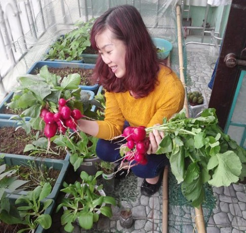 Mẹ bận kinh doanh vẫn trồng rau sạch cho chồng con xơi
