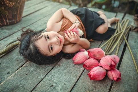 Mê mẩn bé gái Hà Nội 4 tuổi xinh như tiên nữ bên hồ sen