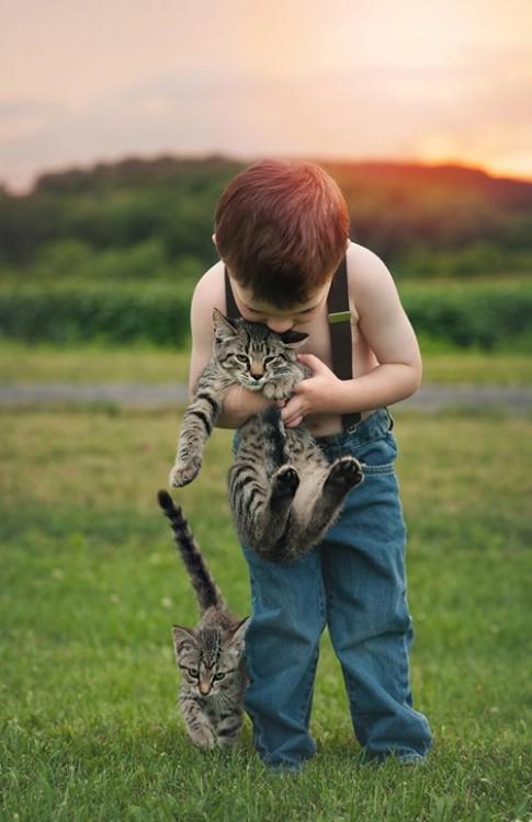 Mèo cào, chó cắn: Dễ tử vong