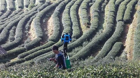 Người đàn ông được Google thuê để vượt 12.000 km chụp cảnh đẹp Thái Lan