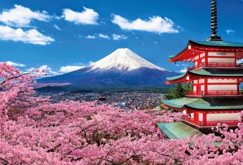 Nhật Bản ơi! Tôi đến đây...