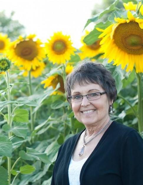 Ông lão trồng 6km hoa hướng dương để tưởng nhớ vợ quá cố