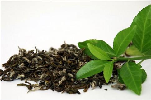 Tự làm xà bông tắm trà xanh giúp da mướt mịn