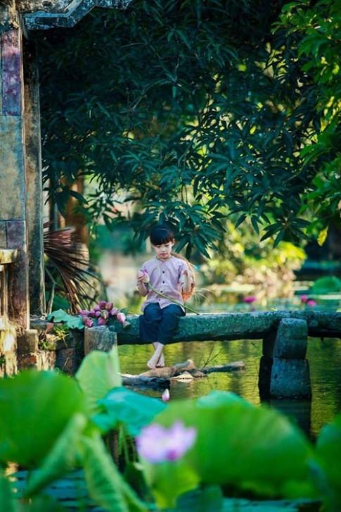 Vẻ đẹp trong trẻo của bé gái Hà Thành bên sen đầu mùa