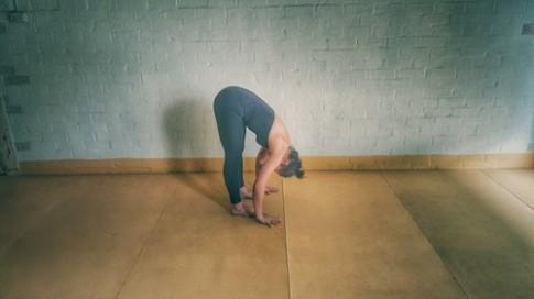 12 tư thế yoga tốt nhất vào buổi sáng, chiều và tối
