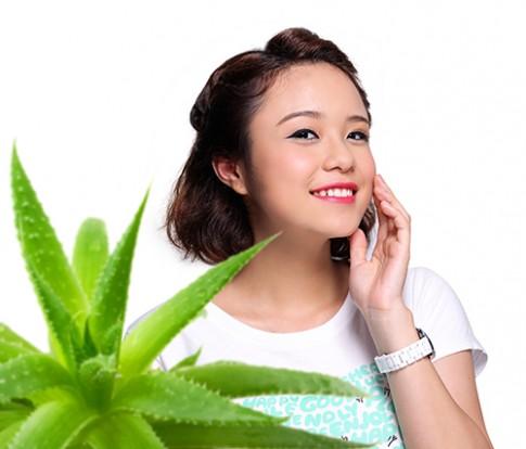 Tự chế dưỡng chất nuôi da từ lô hội và trà xanh