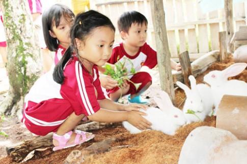Cùng bé yêu khám phá nông trại vui vẻ!.