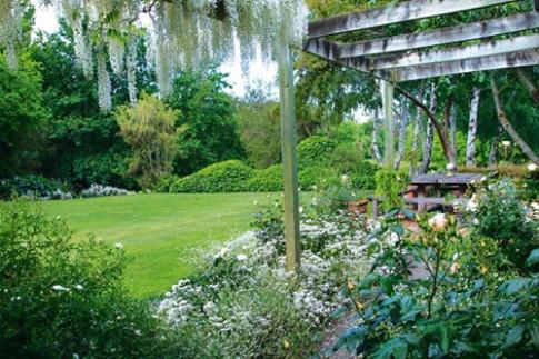 Khu vườn vợ thứ hai tặng vợ trước của chồng