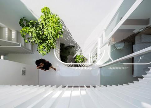 Nhà ống 42 m2 với cây xanh khắp nhà