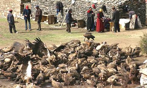 'Thiên táng' rùng rợn và các tục chôn cất của người Tây Tạng