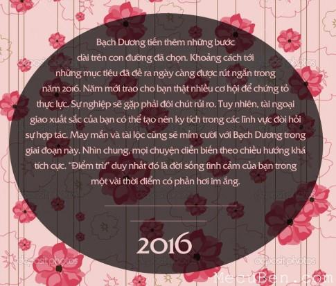 Bói vận mệnh cho 12 cung hoàng đạo năm 2016