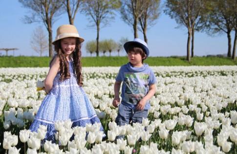 Hai thiên thần lai gốc Việt bên cánh đồng hoa Tulip đẹp như tranh