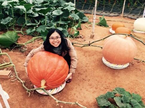 Mẹ trẻ lên Đà Lạt tự trồng vườn rau sạch 400m2