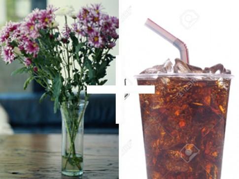 Mẹo đơn giản giữ hoa cắm tươi lâu cả tuần