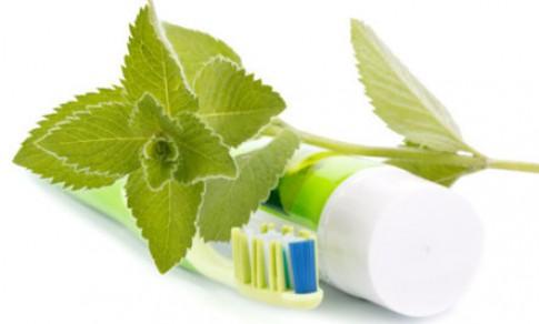 Tự chế kem đánh răng từ nguyên liệu tự nhiên