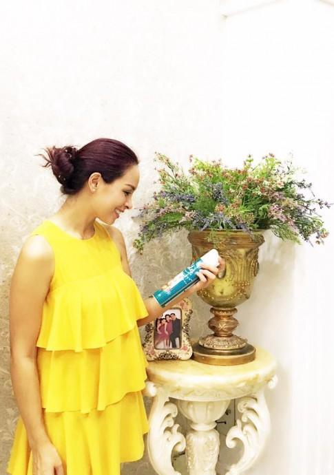 Thúy Hạnh, Phạm Hương bận rộn dọn nhà đón Tết
