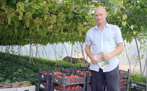Trang trại bạt ngàn nho, dâu tây trong nhà kính ở Nga