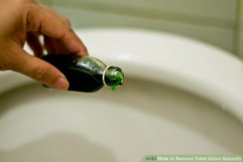 5 cách khử mùi hôi bồn cầu tự nhiên