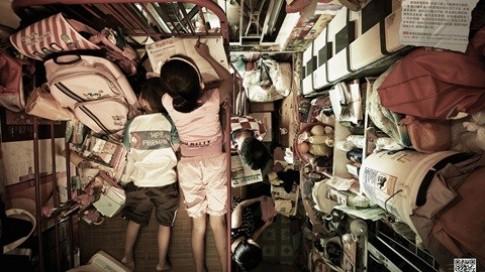 Cận cảnh nhà tổ chim ở Hồng Kông và ở Việt Nam