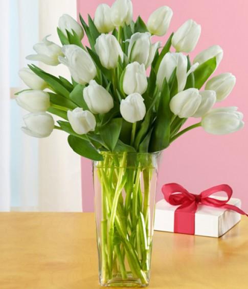 Đủ kiểu cắm hoa tulip dễ nhưng đẹp sang trọng