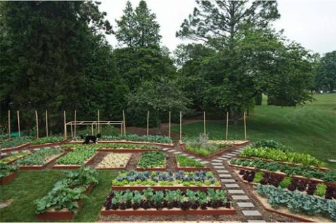 Gia đình Obama mời người dân vào thăm vườn rau