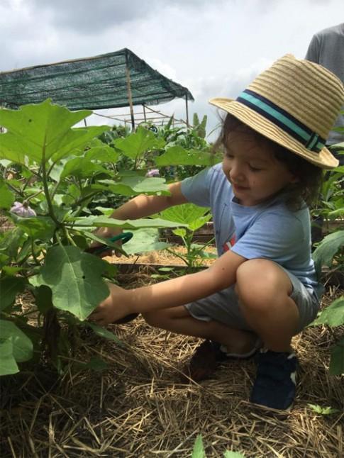 Hai con Hồng Nhung thích thú khám phá công việc làm vườn