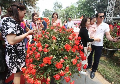 3 lễ hội hoa khiến du khách thất vọng dù chen chúc vào cổng