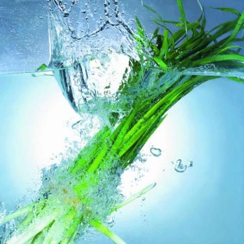 6 loại rau bổ não trẻ thông minh hay ăn